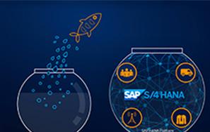 ¿Sabes qué es SAP S4 HANA y para qué sirve?   Novis