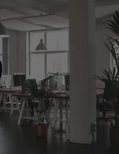 Consultor SAP: Seguridad y Desarrollo en los sistemas SAP