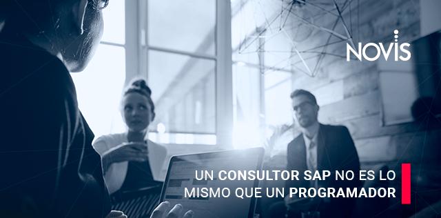 Consultor SAP o Programador